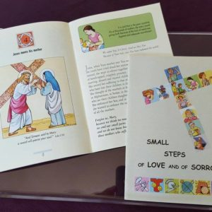 PMS book - small steps